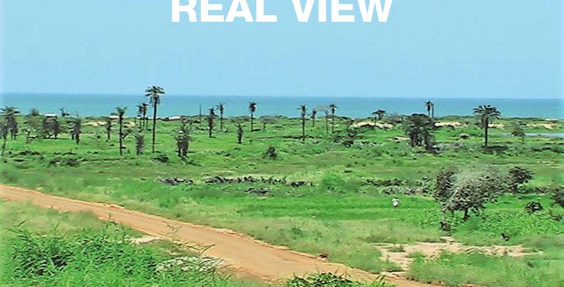 8 Prime sea view plots for Sale | Sambuyang