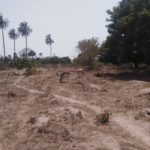 GamRealty | Plot of Land For Sale in Gunjur | The Gambia