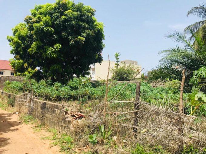 GamRealty Gambia Land for Sale Bakau Banjul