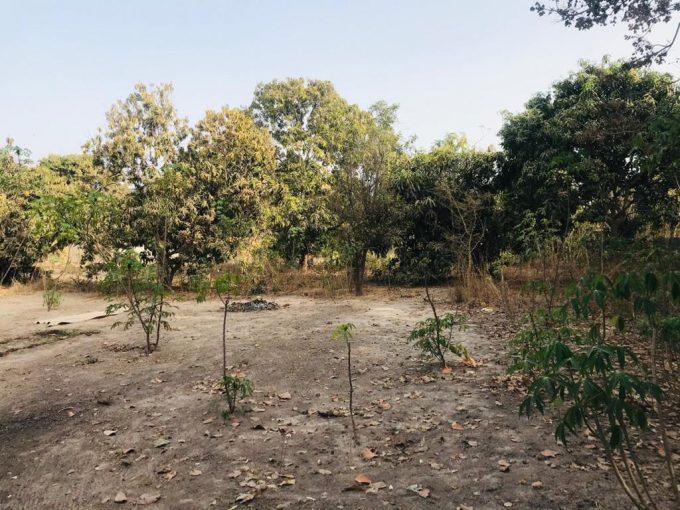 GamRealty real estate Gambia Bijilo plot of land for sale