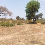 GamRealty plot of land for sale Tujereng