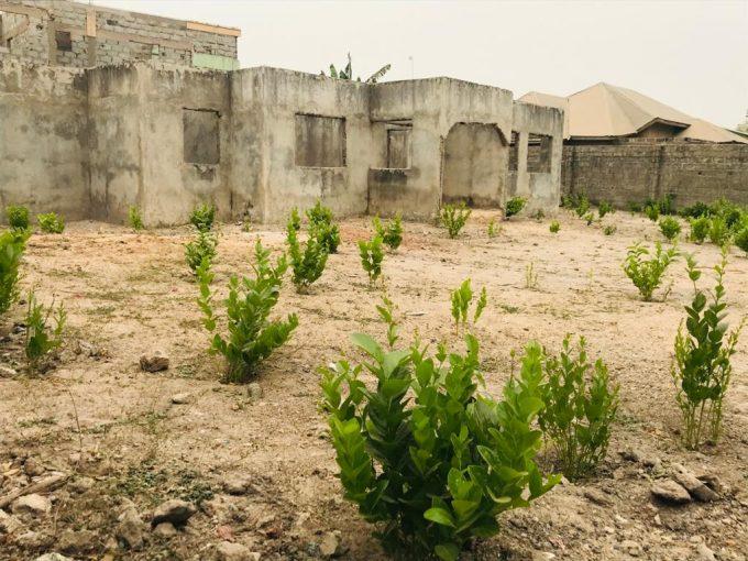 GamRealty land for sale in Sinchu Balia the gambia