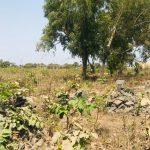 GamRealty land for sale Tujereng