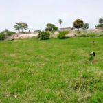 GamRealty Gambia Land for sale Tujereng seaview